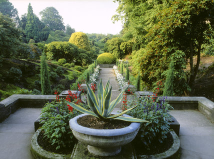The Italian Garden from terrace at top of steps,with central circular stone trough in background, at Biddulph Grange Garden, Staffs