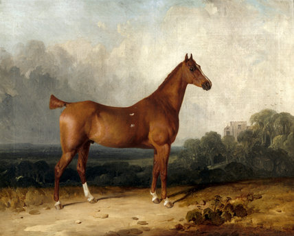 A painting of A CHESTNUT HUNTER IN THE GROUNDS OF CHASTLETON by Thomas Woodward (1801-1853), on the staircase