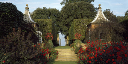 Pavilions seen from the flowering Red Border at Hidcote in the morning,looking towards the clipped hornbeam hedges and iron gates of the Stilt Garden
