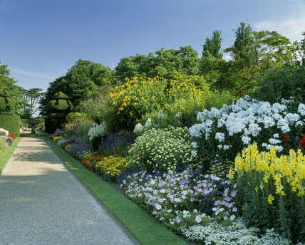 flourishing garden. The Herbaceous Borders At Nymans Garden Flourish With Beautiful Blooms Flourishing E