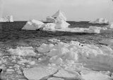 Bergs and floe off Cape Evans. March 7th 1911