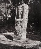 Stone carving (Stela C) at Maya site of Quirigua, Guatemala