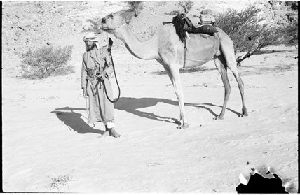 Wilfred Thesiger with camel