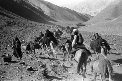 Kandari nomads migrating