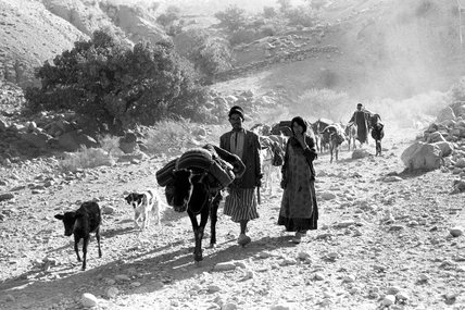 Bakhtiari nomads migrating