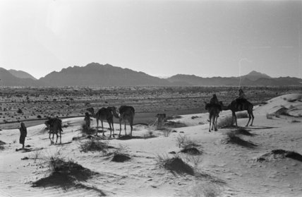 View of Wilfred Thesiger's travelling ...