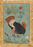 A turkey surrounded by four flowering plants, Mogul School