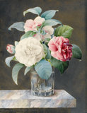 A Cut Glass Vase Containing Camelias, by Sarah Bray