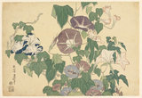 Convolvulus and Tree-Frog, by Hokusai
