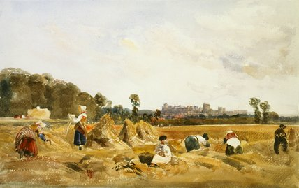 Cornfield, Windsor, by Peter De Wint