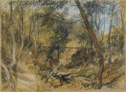 The Woodwalk, Farnley Hall, by Turner