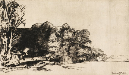 Clump of trees with a vista, by Rembrandt