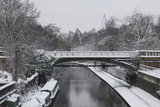 Snowdon Aviary and snow