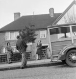 A representative of the YMCA  delivers a Christmas tree to Mrs Devereux in Pinner. The tree is a present from her husband, serving in the arm and purchased through the 'Gifts to Home League' of the YMCA, 1944.