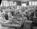 Women munition workers finish small arms cartridges in Small Arms Cartridge Factory No.3 at Woolwich Arsenal, London, during the First World War.