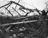 German barbed wire entanglement at Beaucourt-sur-Ancre after the village was captured on 14 November 1916, during the closing phase of the Battle of the Somme.
