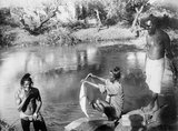 Indian Troops of the 7th Meerut Division bathing in the River Auja, Summer 1918.