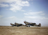 Three Curtiss Kittyhawk Mark IIIs of No 112 Squadron, Royal Air Force