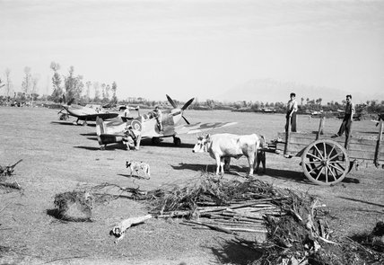 Supermarine Spitfires of No. 232 Squadron RAF being serviced at Serretelle landing ground, near Salerno in Italy, 3 October 1943.