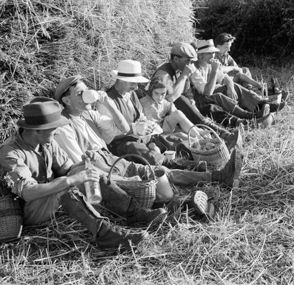 Workers from Mount Barton Farm in Devon pause for a drink and a bite to eat whilst harvesting wheat in 1942.