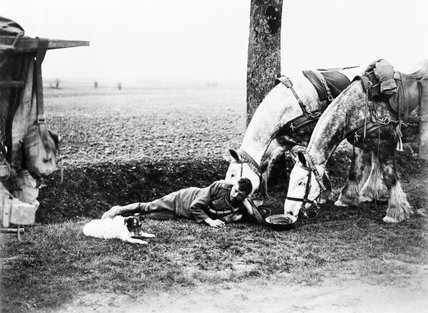 A British Army driver lying at the roadside near Arras with his two horses and dog during the retreat from the German offensive, 17 April 1917.