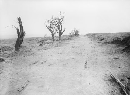 The road leading to Guillemont, Somme, 10 September 1916.