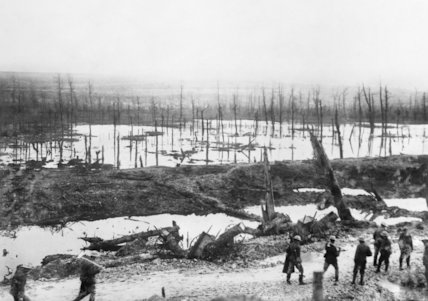 Flooded area in the Ancre Valley, Somme, November 1916.