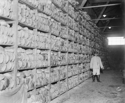 A corner of the bread store. Loaves ready to be sent up the line. Army bakery, Calais March 1917.