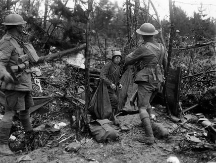 Men of the 5th Battalion, Devonshire Regiment, take a German prisoner in the Bois de Reims during the Battle of the Tardenois, July 1918.