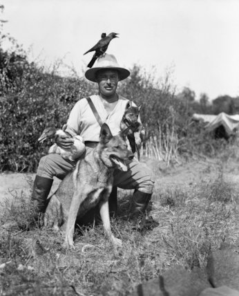 A British officer of the Army Veterinary Corps in Salonika with his pets which included two jackdaws, a wild goose, a wolf cub and an Alsatian dog.