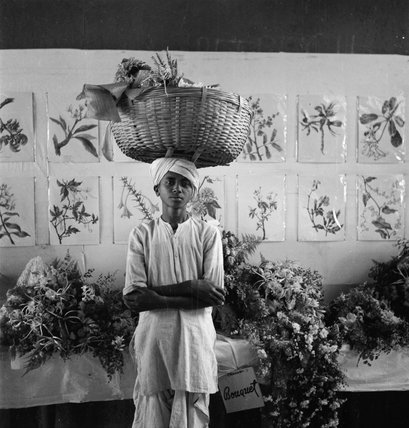 A young boy delivers an exhibit at a display of flower arranging, Bombay, India, 1944