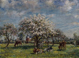 An Orchard in the Spring