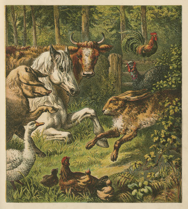 The Hare and the Tortoise; 'Aunt Louisa's Keepsake',London: Frederick Warne, [1871?]