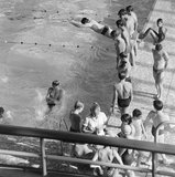 Swimmers at  the Crystal Palace  Recreation Centre; 1964