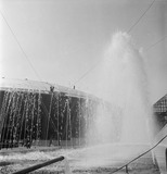 Fountains within the South Bank Exhibition: 1951