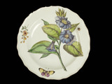 Plate decorated in 'Hans Sloane' botanical style; 1752-1758