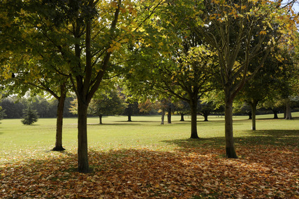 Nonsuch park;  2009