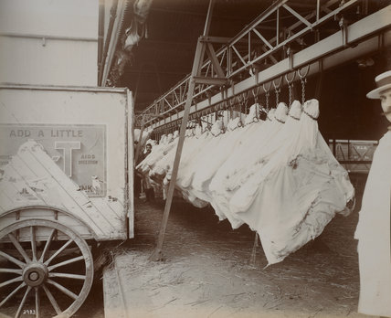 Disharging meat overside by endless band conveyor. c.1920