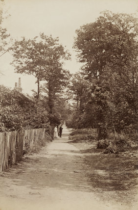 Winchmore Hill Wood; c.1870