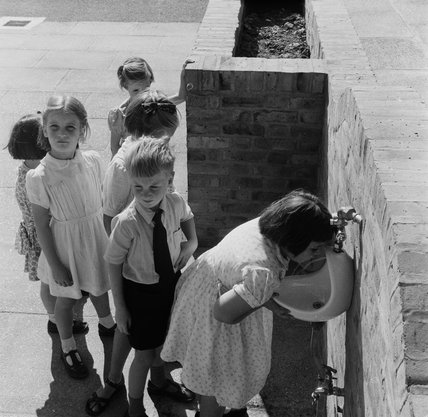 Children drinking from a water fountain; 1951