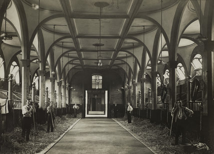 The largest stable in the Royal Mews, C 1915-1925