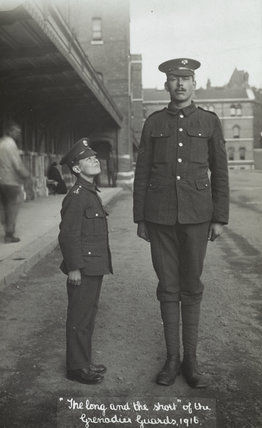 The Long and the Short of the Grenadier Guards,