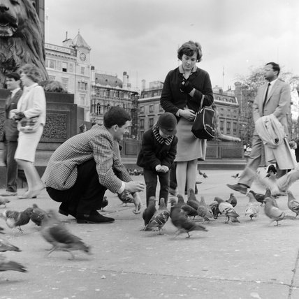 Family feeding the pigeons in Trafalgar Square in 1962