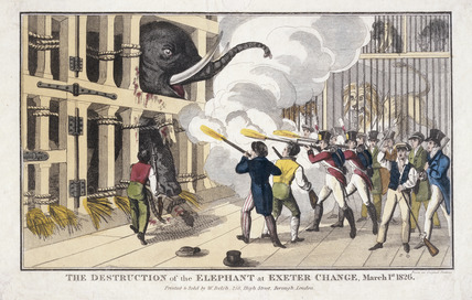 The Destruction of the Elephant detroyed at Exeter 'Change': 1826