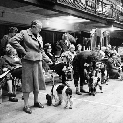 Crufts dog show, Olympia: 1964