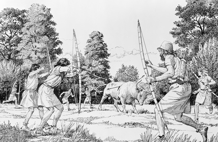 A reconstruction drawing of prehistoric hunting of aurochs