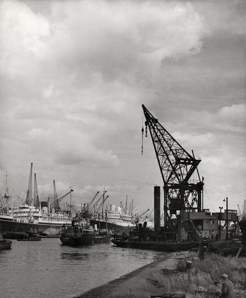 Royal Albert Dock: 1951