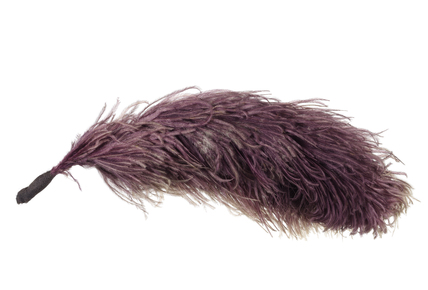 Emmeline Pankhurst's purple ostrich feather: 1908