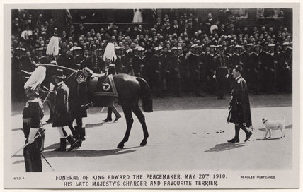 'Funeral of King Edward the Peacemaker, May 20th 1910. His Late Majesty's Charger and Favourite Terrier.'