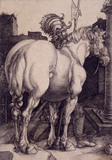 The Great Horse, by Albert Dürer